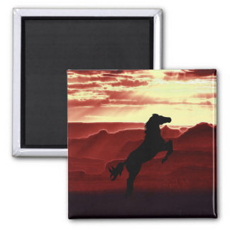 A rearing horse silhouette magnet