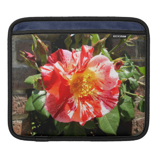 A Red And White Rose iPad Sleeve