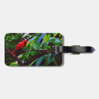 A red bird sits on a post luggage tag