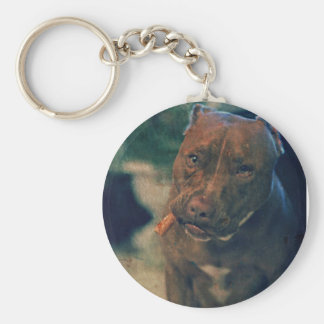 A Red Nose Pit Bull Chewing a Cigar Basic Round Button Keychain