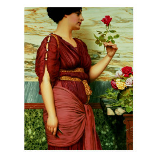 A red, red rose postcard