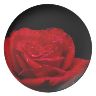 A Red Rose For You Party Plate