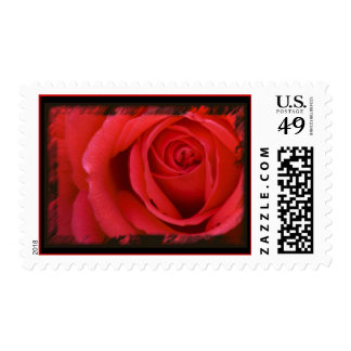 A Red Rose For You Stamp 2