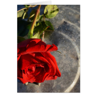 A red rose on a silver circled background left greeting card