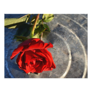 A red rose on a silver circled background left flyer design
