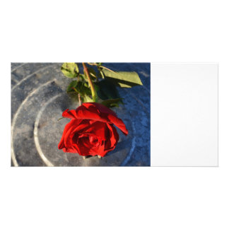 A red rose on a silver circled background right photo card