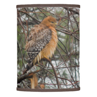 A Red-shouldered Hawk on a Branch Lamp Shade