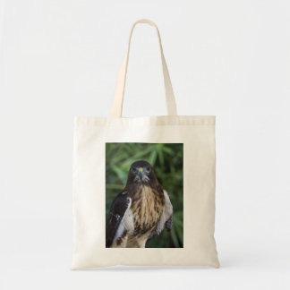 A red-shouldered hawk photo on a tote bag