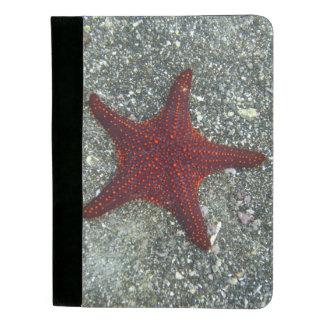 A Red Starfish | Galapagos, Equador Padfolio