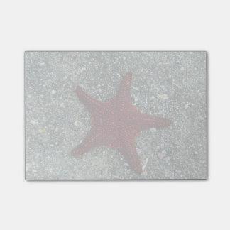 A Red Starfish | Galapagos, Equador Post-it Notes