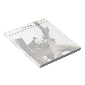 A relaxing giant panda on tree branches notepad