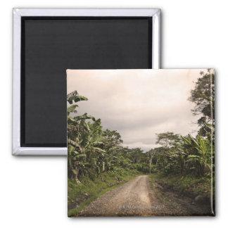 A remote jungle road 2 inch square magnet