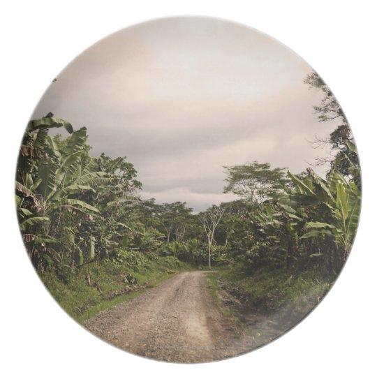 A remote jungle road melamine plate
