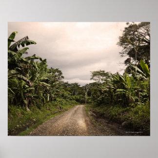 A remote jungle road poster
