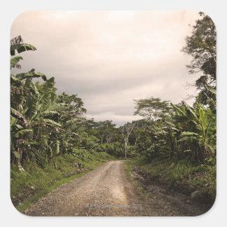 A remote jungle road square sticker