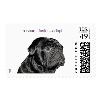 a rescue pug postage stamp