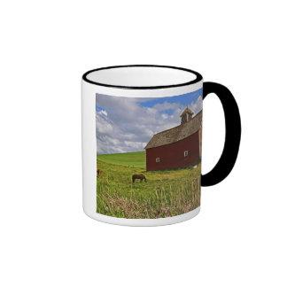 A ride through the farm country of Palouse 3 Mugs