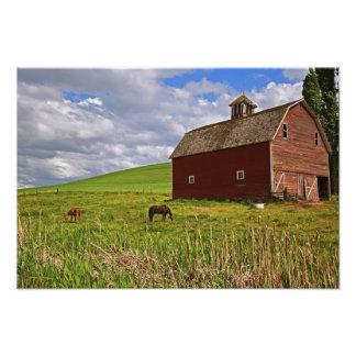 A ride through the farm country of Palouse 3 Photo Print