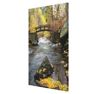 A River Running Through American Fork Canyon Canvas Print