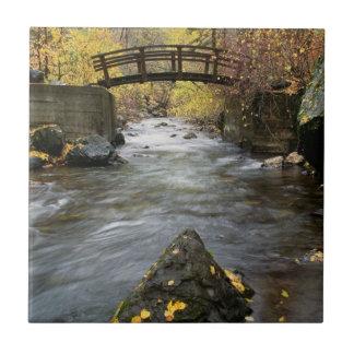 A River Running Through American Fork Canyon Ceramic Tile