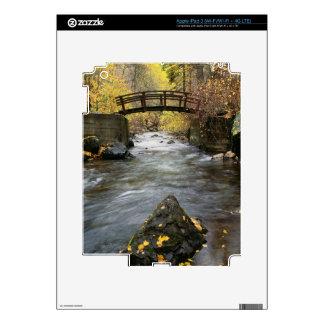 A River Running Through American Fork Canyon iPad 3 Skin