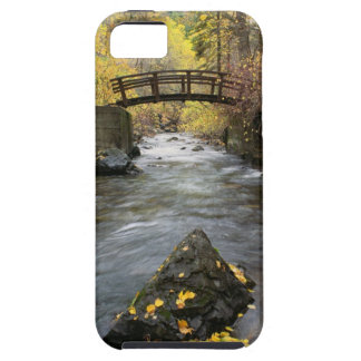 A River Running Through American Fork Canyon iPhone SE/5/5s Case