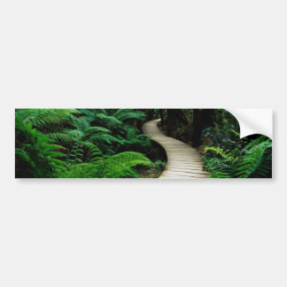 A road in the middle of the wild forest bumper sticker
