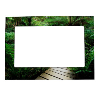 A road in the middle of the wild forest magnetic picture frame