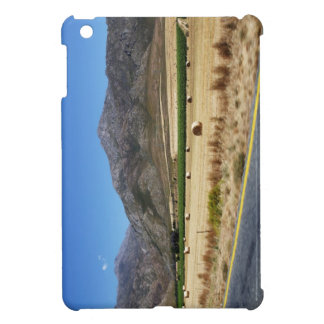 A road through South Africa's beautiful mountains Cover For The iPad Mini
