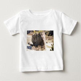 A Rock in Idaho Baby T-Shirt