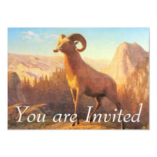 A Rocky Mountain Sheep by A. Bierstadt 4.5x6.25 Paper Invitation Card