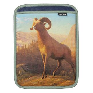 A Rocky Mountain Sheep by A. Bierstadt iPad Sleeve