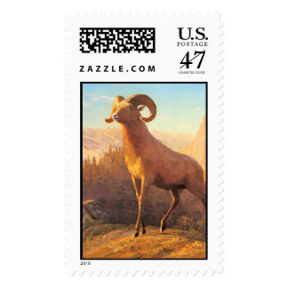 A Rocky Mountain Sheep by A. Bierstadt Postage