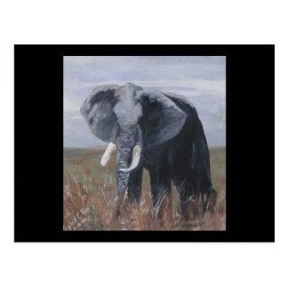 """A Rogue Elephant"" Horizonal Postcard"