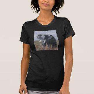 """A Rogue Elephant"" Ladies Twofer Sheer Dresses"