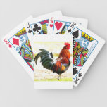 A Rooster Bicycle Card Deck