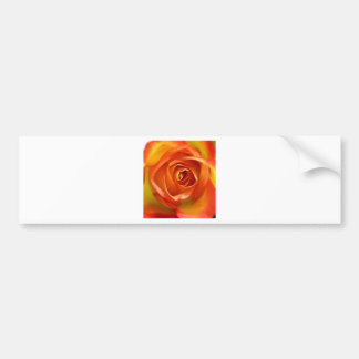 A Rose by any other name Bumper Sticker