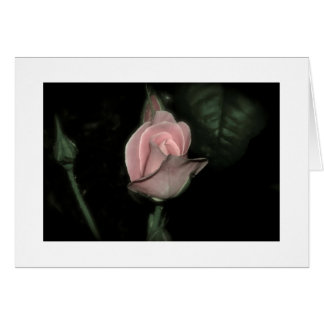 A Rose by any other name..... Greeting Card