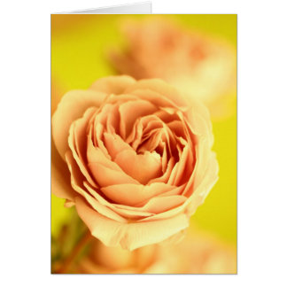 A rose by any other name is still a rose.JPG Card