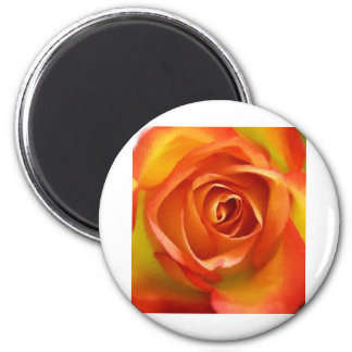 A Rose by any other name Fridge Magnets