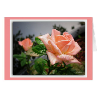 """""""A rose by any other name...""""/notecard Card"""