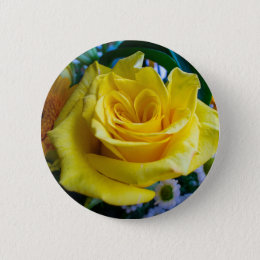 A rose by any other name pinback button