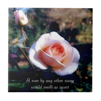 A Rose by Any Other Name Rose Photograph Tile