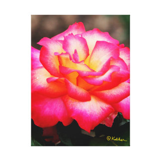 A Rose By Any Other Name Wall Art