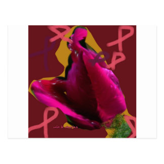 a rose for cansor post cards