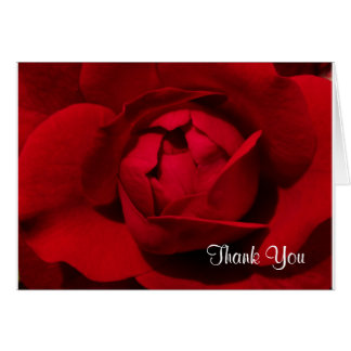 A Rose For You & A Thank You From Me! Card