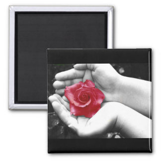 A Rose in the Hand 2 2 Inch Square Magnet