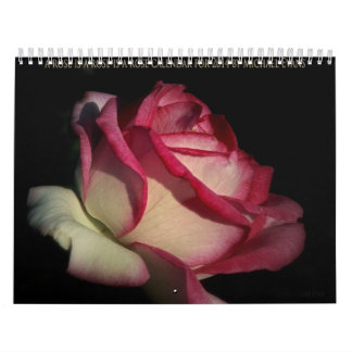 a rose is a rose is a rose calendar for 2014