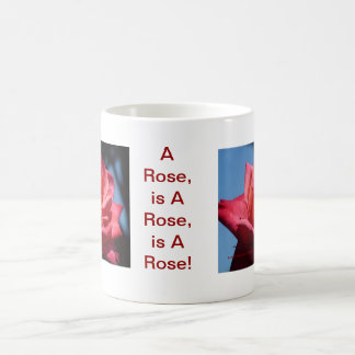 A Rose, is A Rose, is A Rose! Morphing & More! Magic Mug