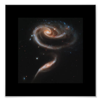 A Rose Made Of Galaxies - Hubble Space Telescope Poster